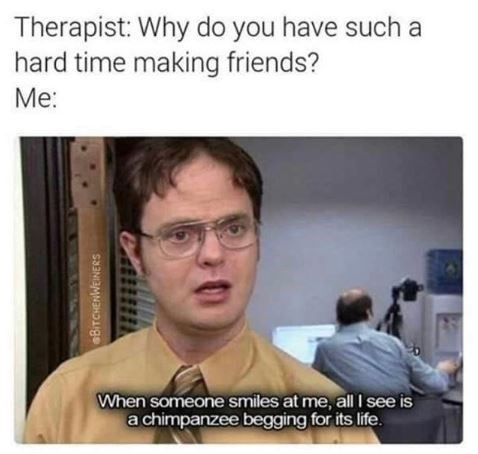 Meme - Text - Therapist: Why do you have such a hard time making friends? Me: When someone smiles at me, all I see is achimpanzee begging for its life BITCHENWEINERS