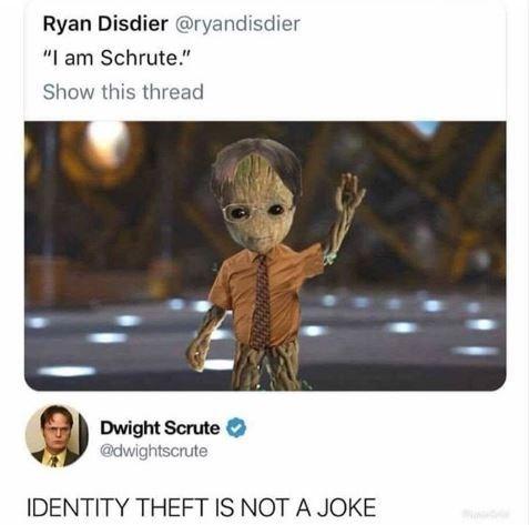 "Meme - Cartoon - Ryan Disdier @ryandisdier ""I am Schrute."" Show this thread Dwight Scrute @dwightscrute IDENTITY THEFT IS NOT A JOKE"