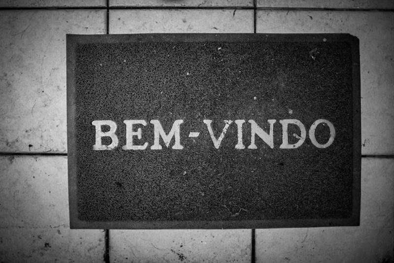 animal photography - Text - BEM-VIND0
