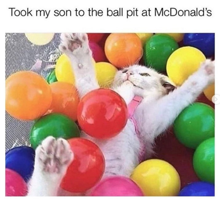cat meme - Balloon - Took my son to the ball pit at McDonald's
