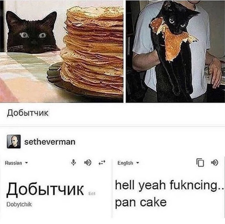 cat meme - Cat - Добытчик setheverman Russian English hell yeah fukncing... Добытчик Ed pan cake Dobytchik