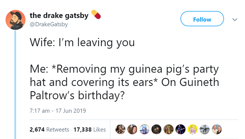 Text - the drake gatsby Follow @DrakeGatsby Wife: I'm leaving you Me: *Removing my guinea pig's party hat and covering its ears* On Guineth Paltrow's birthday? 7:17 am - 17 Jun 2019 2,674 Retweets 17,338 Likes