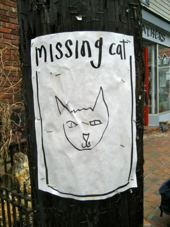 missing drawing poster Cats funny - 9321485824