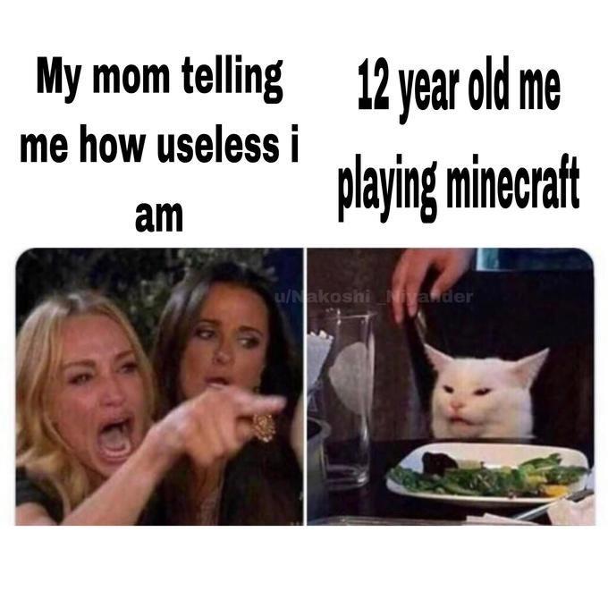 Meme - Facial expression - 12 year old me My mom telling me how useless iaving minecraft am u/Nakoshi Nivander