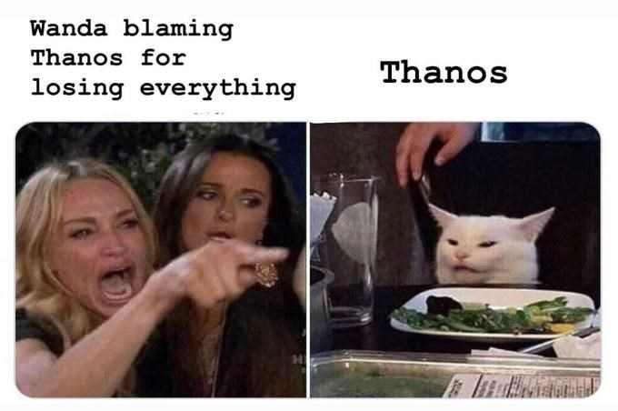 Meme - Facial expression - Wanda blaming Thanos for Thanos losing everything