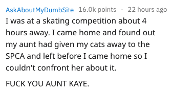 Text - AskAboutMyDumbSite 16.0k points 22 hours ago I was at a skating competition about 4 hours away. I came home and found out my aunt had given my cats away to the SPCA and left before I came home so I couldn't confront her about it. FUCK YOU AUNT KAYE.
