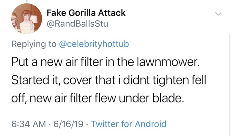 shameless dad - Text - Fake Gorilla Attack @RandBallsStu Replying to @celebrityhottub Put a new air filter in the lawnmower Started it, cover that i didnt tighten fell off, new air filter flew under blade. 6:34 AM 6/16/19 Twitter for Android