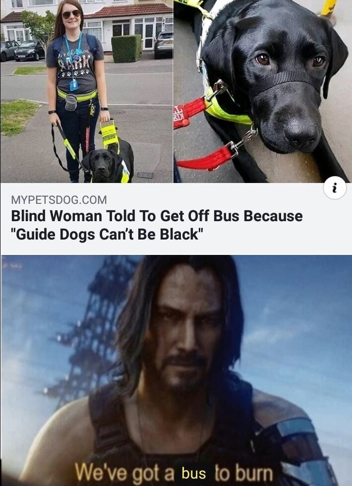 "Personal protective equipment - MYPETSDOG.COM Blind Woman Told To Get Off Bus Because ""Guide Dogs Can't Be Black"" We've got a bus to burn"
