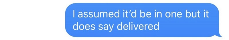 Text - Text - I assumed it'd be in one but it does say delivered