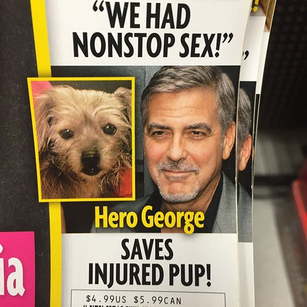 "news headline - Dog - ""WE HAD NONSTOP SEX!"" Hero George SAVES INJURED PUP! la $4.99US $5.99CAN"