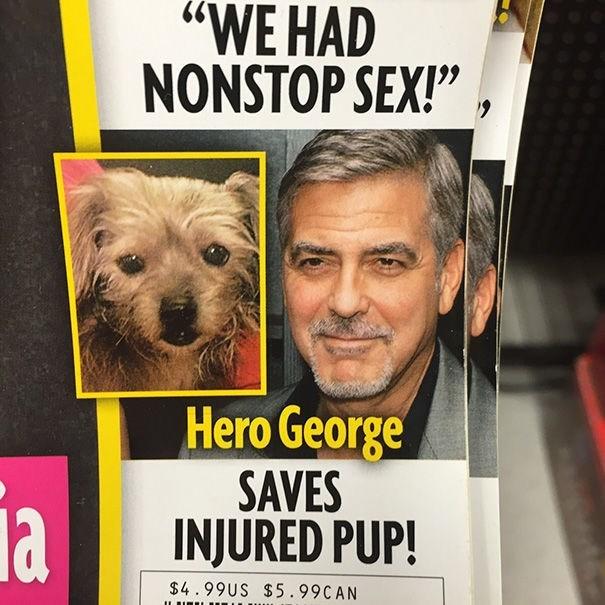 "news headline - Dog - ""WE HAD NONSTOP SEX!"" Hero George SAVES INJURED PUP! la $4.99US $5.99CAN"