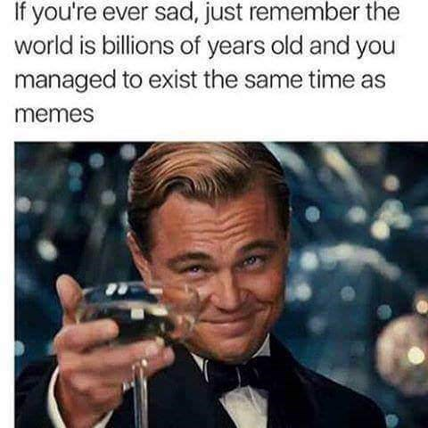 sily shitpost - Photo caption - If you're ever sad, just remember the world is billions of years old and you managed to exist the same time as memes