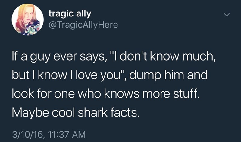 "sily shitpost - Text - tragic ally @TragicAllyHere If a guy ever says, ""l don't know much, but I know I love you"", dump him and look for one who knows more stuff Maybe cool shark facts. 3/10/16, 11:37 AM"