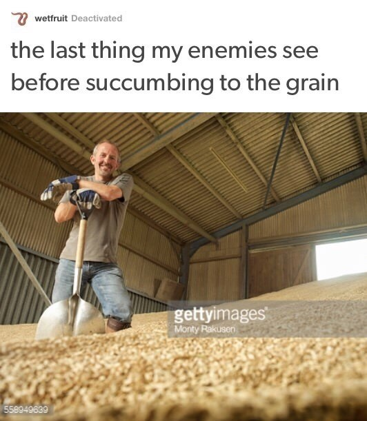 sily shitpost - Plant - wetfruit Deactivated the last thing my enemies see before succumbing to the grain gettyimages Monty Rakusen 558949639
