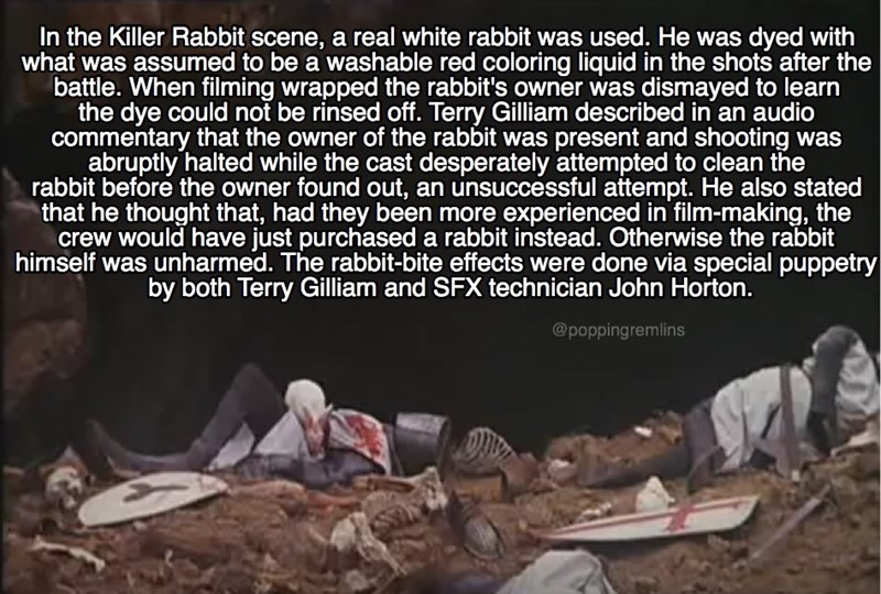 monty python - Text - In the Killer Rabbit scene, a real white rabbit was used. He was dyed with what was assumed to be a washable red coloring liquid in the shots after the battle. When filming wrapped the rabbit's owner was dismayed to learn the dye could not be rinsed off. Terry Gilliam described in an audio commentary that the owner of the rabbit was present and shooting was abruptly halted while the cast