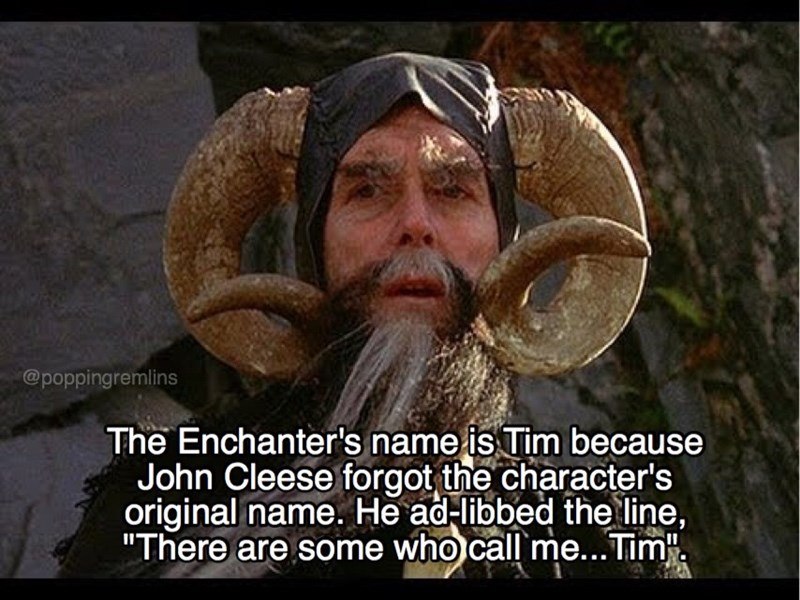 """monty python - Facial hair - @poppingremlins The Enchanter's name is Tim because John Cleese forgot the character's original name. He ad-libbed the line, """"There are some who call me...Tim."""