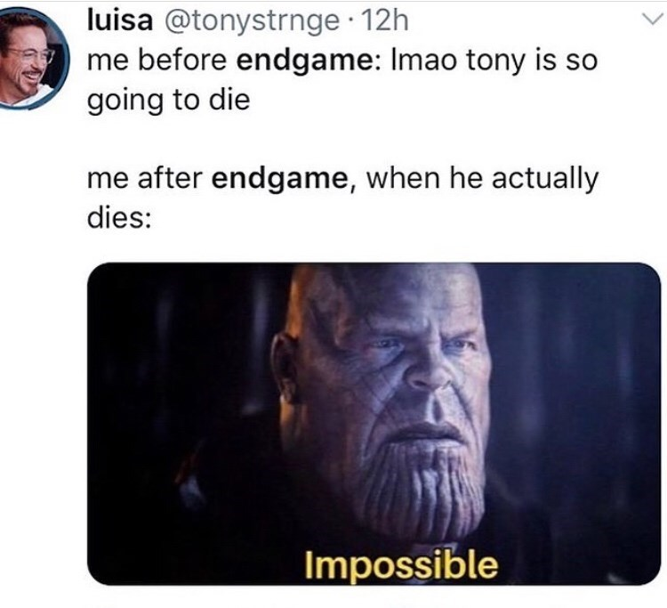Text - luisa @tonystrnge 12h me before endgame: Imao tony is going to die me after endgame, when he actually dies: Impossible