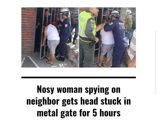 meme - Product - OLIC BM COW Nosy woman spying on neighbor gets head stuck in metal gate for 5 hours ACD