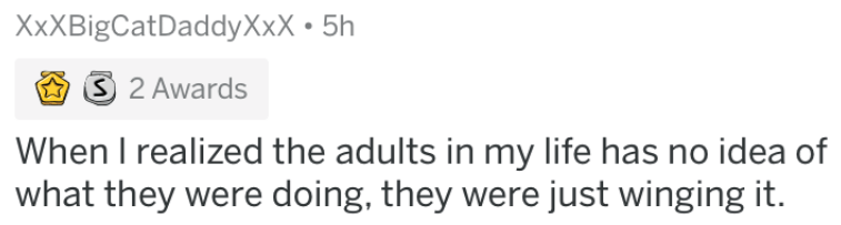growing up - Text - XxXBigCatDaddyXxX 5h 2 Awards When I realized the adults in my life has no idea of what they were doing, they were just winging it.