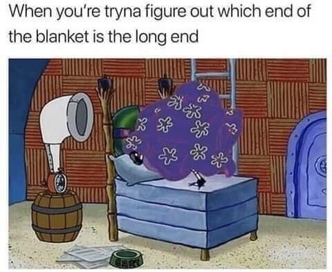 Meme - Cartoon - When you're tryna figure out which end of the blanket is the long end