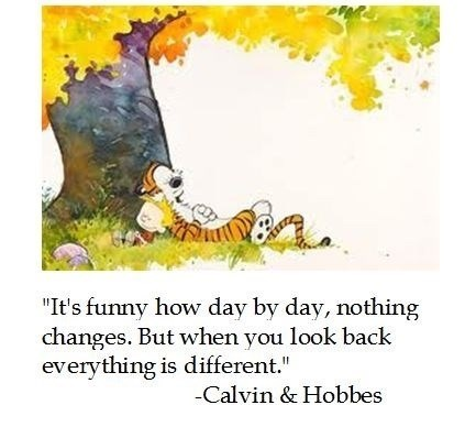 """Meme - Text - """"It's funny how day by day, nothing changes. But when you look back everything is different."""" Calvin & Hobbes"""
