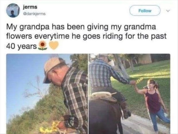 wholesome meme - Adaptation - jerms Follow edankjerms My grandpa has been giving my grandma flowers everytime he goes riding for the past 40 years