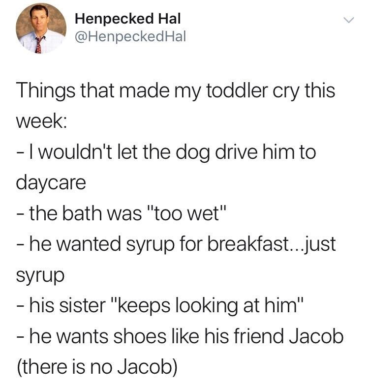 "Meme - Text - Henpecked Hal @HenpeckedHal Things that made my toddler cry this week: -I wouldn't let the dog drive him to daycare - the bath was ""too wet"" - he wanted syrup for breakfast...just syrup - his sister ""keeps looking at him"" - he wants shoes like his friend Jacob (there is no Jacob)"