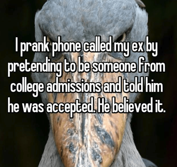 evil prank - Font - prank phone caled my exby pretending to besomeone from college admissions and told him he was accepted. He believed it.
