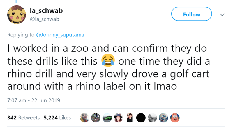 Text - la_schwab Follow @la_schwab Replying to @Johnny_suputama worked in a zoo and can confirm they do these drills like this one time they did a rhino drill and very slowly drove a golf cart around with a rhino label on it Imao 7:07 am 22 Jun 2019 342 Retweets 5,224 Likes