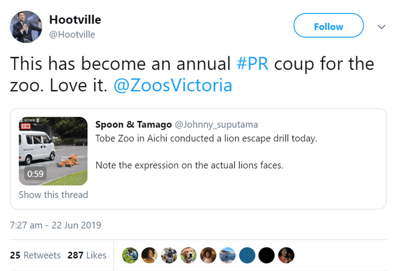 Text - Hootville Follow @Hootville This has become an annual #PR coup for the zoo. Love it. @ZoosVictoria Spoon & Tamago @Johnny_suputama Tobe Zoo in Aichi conducted a lion escape drill today. Note the expression on the actual lions faces. 0:59 Show this thread 7:27 am 22 Jun 2019 25 Retweets 287 Likes