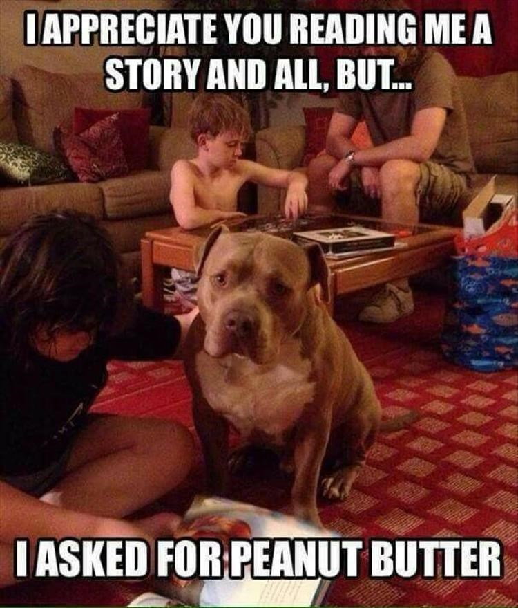 Dog - IAPPRECIATE YOU READING ME A STORY AND ALL, BUT... IASKED FOR PEANUT BUTTER