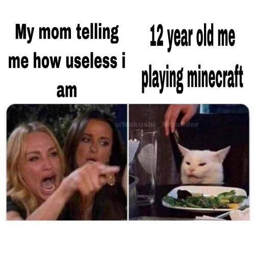 Facial expression - My mom telling 12 year old me me how useless i playing minecraft am /Nakoshiivander
