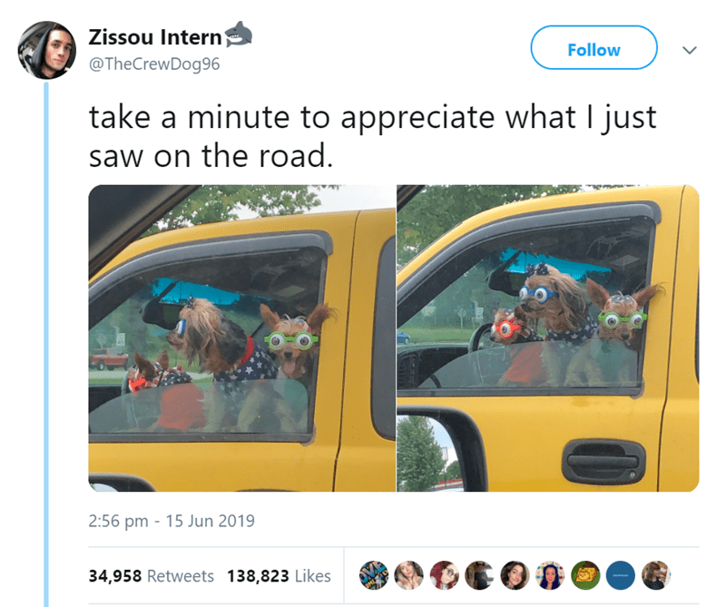 Product - Zissou Intern Follow @TheCrewDog96 take a minute to appreciate what I just saw on the road. 2:56 pm 15 Jun 2019 34,958 Retweets 138,823 Likes