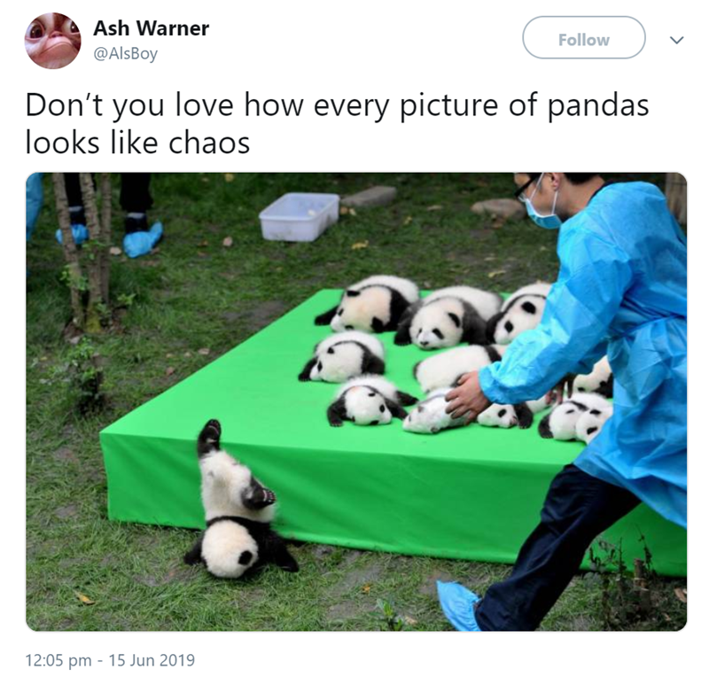 Grass - Ash Warner Follow @AlsBoy Don't you love how every picture of pandas looks like chaos 12:05 pm 15 Jun 2019