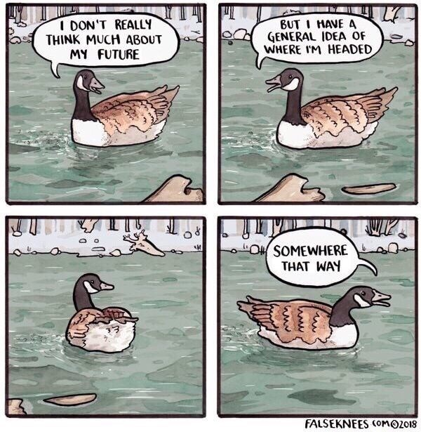 funny pic - Duck - I DON'T REALLY THINK MUCH ABOUT MY FUTURE BUTI HAVE A GENERAL IDEA OF WHERE IM HEADED O SOMEWHERE THAT WAY FALSEKNEES OMOZO18
