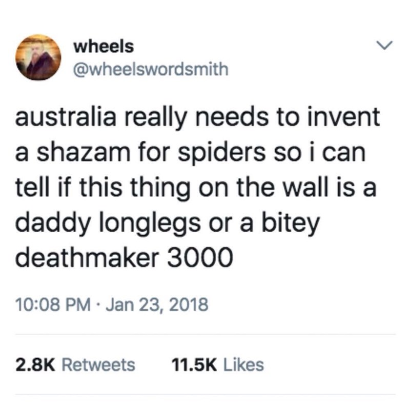 funny pic - Text - wheels @wheelswordsmith australia really needs to invent a shazam for spiders so i can tell if this thing on the wall is a daddy longlegs or a bitey deathmaker 3000 10:08 PM Jan 23, 2018 2.8K Retweets 11.5K Likes