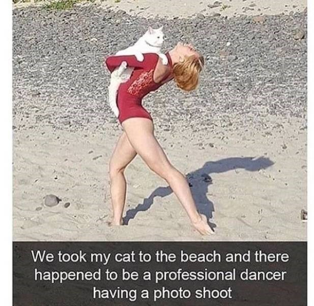 Leg - We took my cat to the beach and there happened to be a professional dancer having a photo shoot