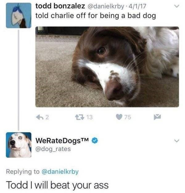 Dog - todd bonzalez @danielkrby 4/1/17 told charlie off for being a bad dog 13 2 75 WeRateDogsTM @dog_rates Replying to @danielkrby Todd I will beat your ass