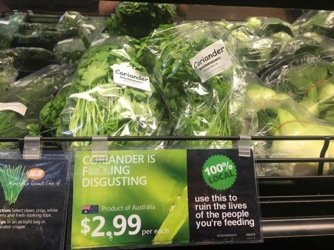 Leaf vegetable - ardreoecs bee Brch Coriander Coriander CORIANDER IS F ING DISGUSTING IGA Me e locats like it 100% LOCAL ction Select clean, crisp, white ms and fresh-looking tops ge In an airtight bag in erator crisper use this to ruin the lives of the people you're feeding Product of Australia $2.99 per each scoo0000 8379