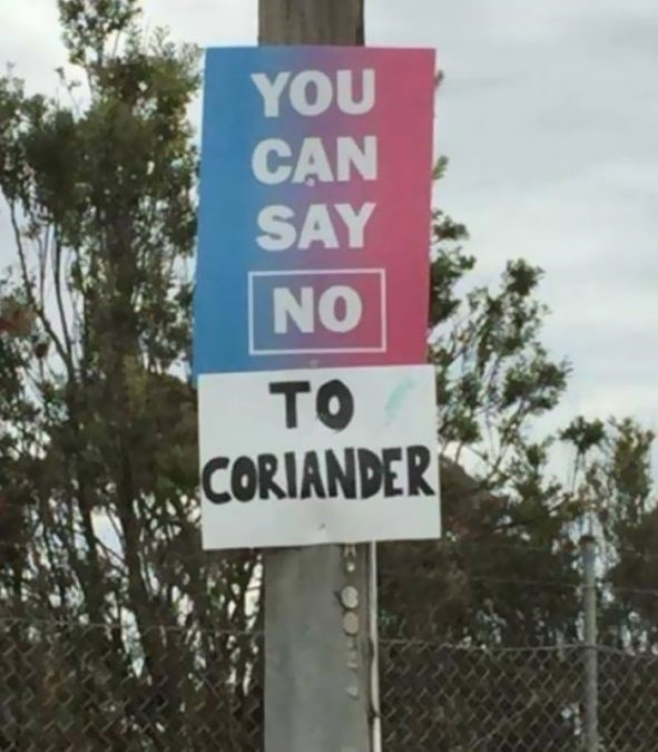 Street sign - YOU CAN SAY NO TO CORIANDER