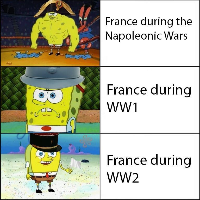 Cartoon - France during the Napoleonic Wars France during wW1 France during wW2