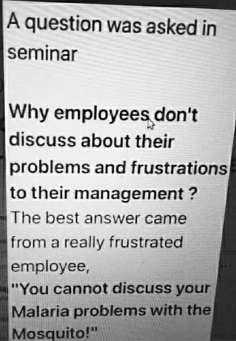 "Meme - Text - A question was asked in seminar Why employees don't |discuss about their problems and frustrations to their management? The best answer came from a really frustrated employee, ""You cannot discuss your Malaria problems with the Mosquito!"""