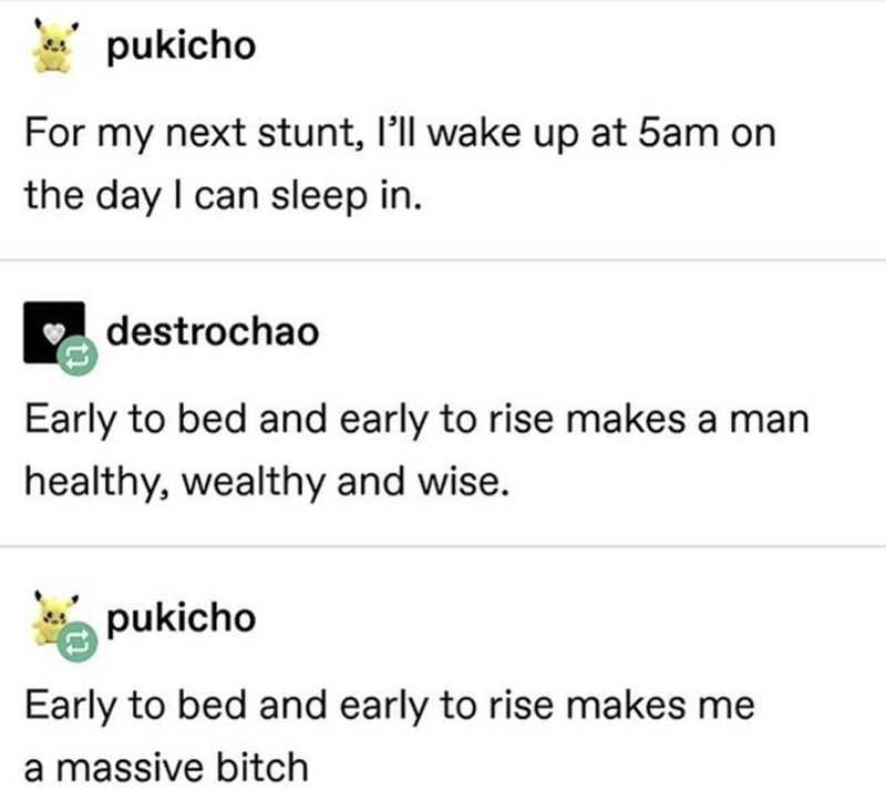 funny meme - Text - pukicho For my next stunt, 'll wake up at 5am on the day I can sleep in. destrochao Early to bed and early to rise makes a man healthy, wealthy and wise. pukicho Early to bed and early to rise makes me a massive bitch