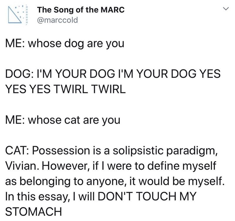 funny meme - Text - The Song of the MARC @marccold ME: whose dog are you DOG: I'M YOUR DOG I'M YOUR DOG YES YES YES TWIRL TWIRL ME: whose cat are you CAT: Possession is a solipsistic paradigm, Vivian. However, if I were to define myself as belonging to anyone, it would be myself. In this essay, I will DON'T TOUCH MY STOMACH