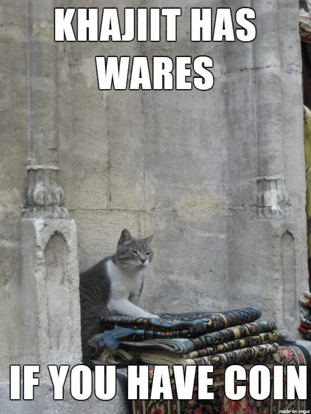Meme - Photo caption - KHAJIIT HAS WARES IF YOU HAVE COIN made on imgur