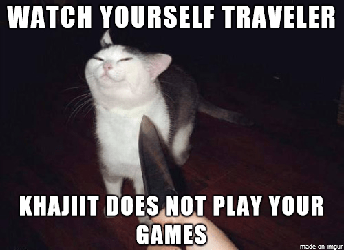 Meme - Cat - WATCH YOURSELF TRAVELER KHAJIIT DOES NOT PLAY YOUR GAMES made on imgur