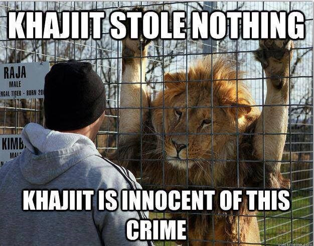 Meme - Felidae - KHAJIT STOLE NO0THING RAJA MALE ENCAL TIGER BORN 20 KIMB MAL KHAJIT IS INNOCENT OF THIS CRIME auckmeme.com