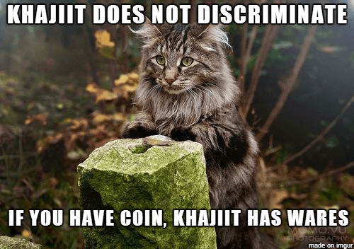Meme - Cat - KHAJIIT DOES NOT DISCRIMINATE IF YOU HAVE COIN, KHAJIIT HAS WARES MOVU TOGRAPHY made on imgur