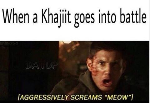 "Meme - Text - When a Khajit goes into batle tironraid DATDP [AGGRESSIVELY SCREAMS ""MEOW"""