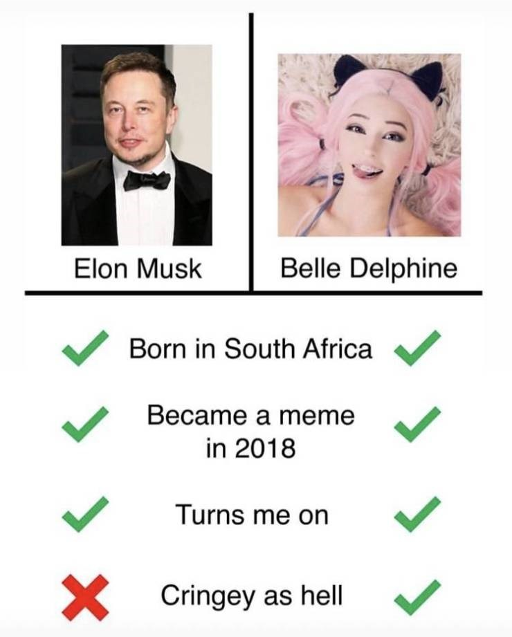 Meme - Text - Belle Delphine Elon Musk Born in South Africa Became a meme in 2018 Turns me on X Cringey as hell